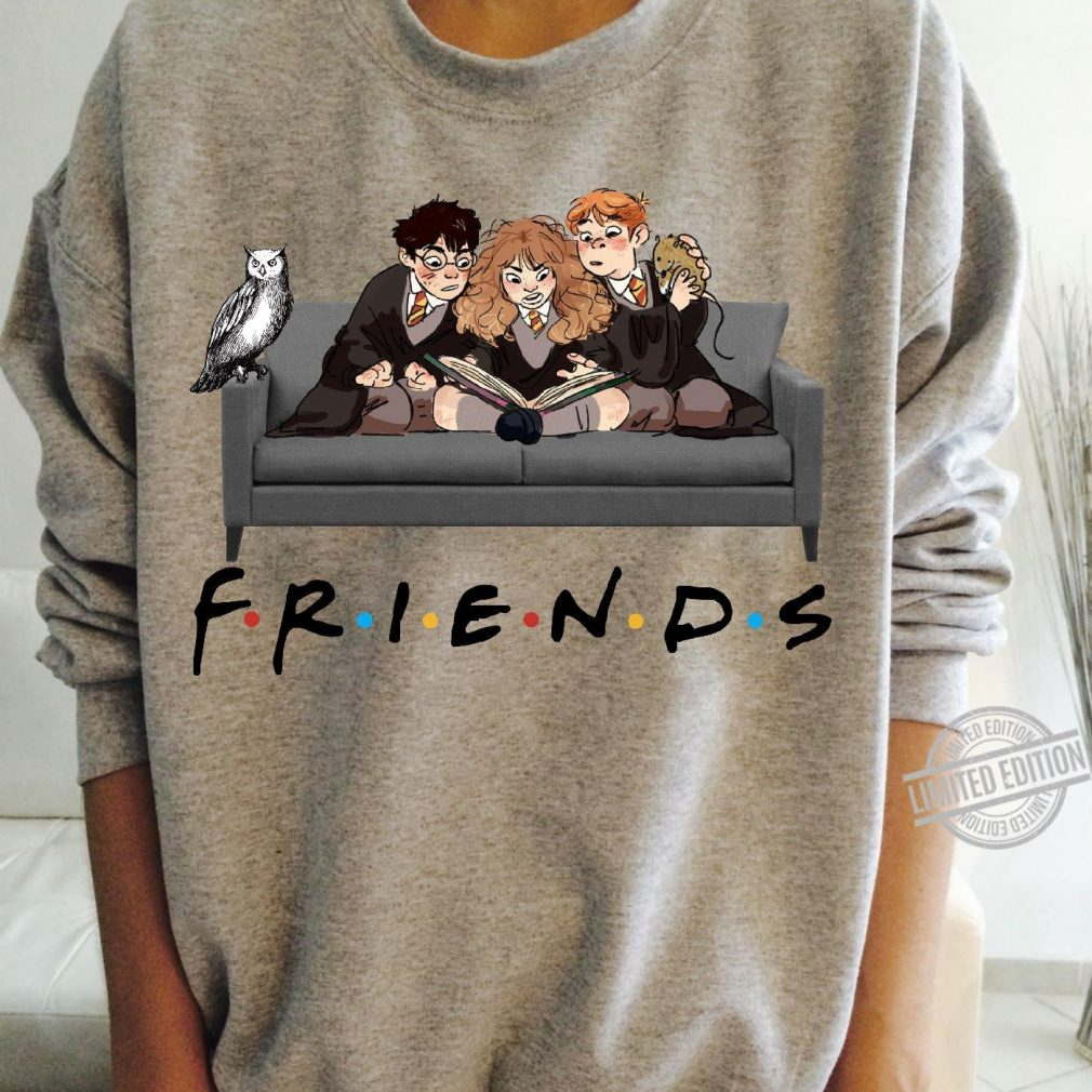 Harry Potter Is My Best Friends Shirt